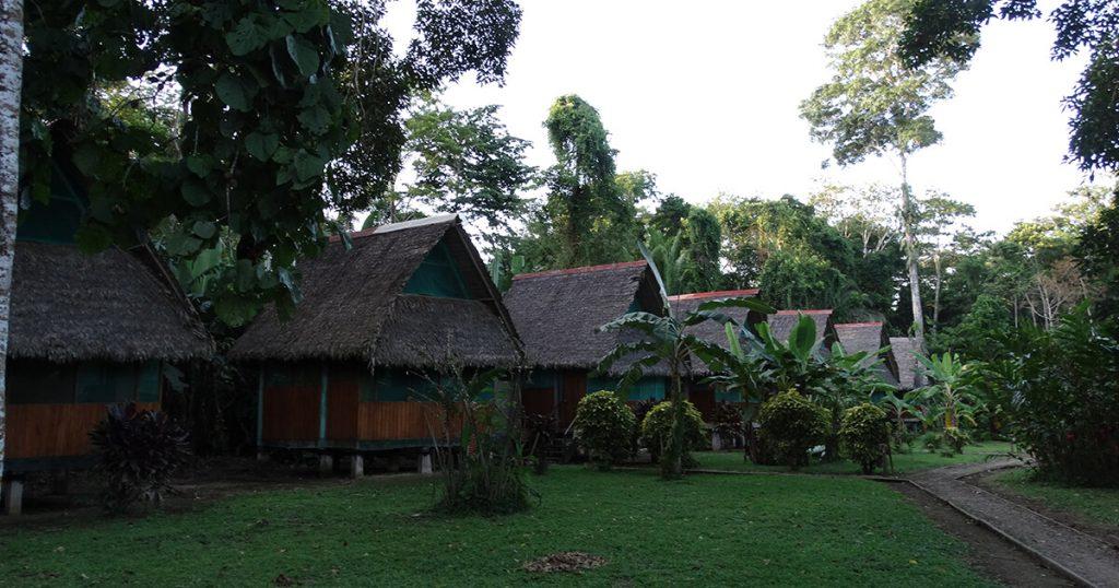 amazon-jungle-tours-5-days