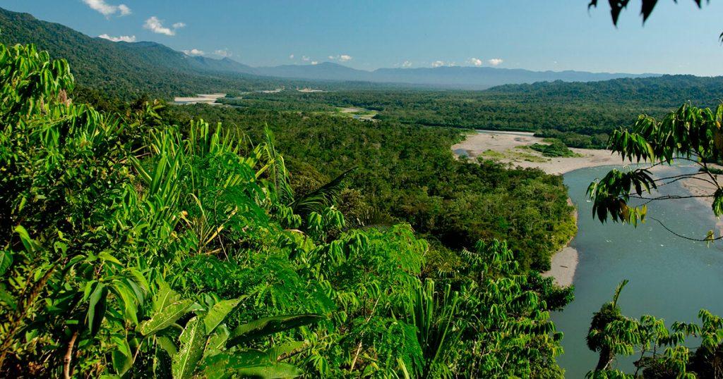 cusco-jungle