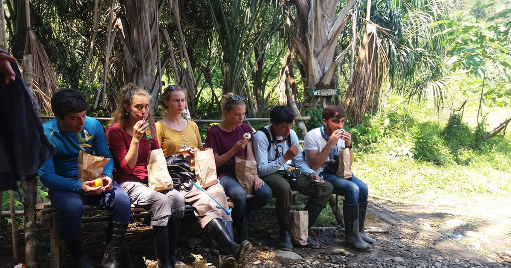 peru-rainforest-tour