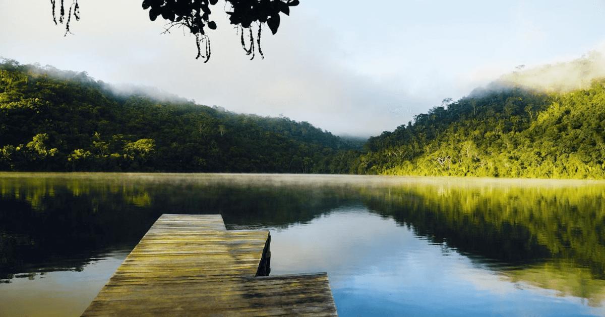 Jungle-of-Peru-Tarapoto