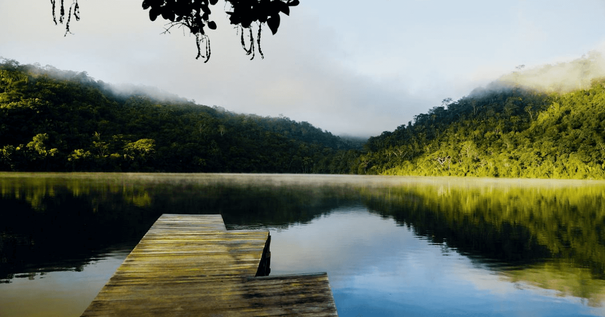 Best Destinations in Peruvian Jungle