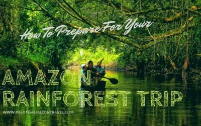 How To Prepare For Your Amazon Rainforest Trip