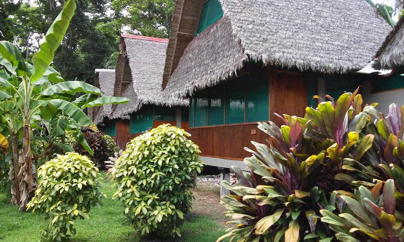 Tambopata Amazon Peru, Amazon Jungle Tours Puerto Maldonado